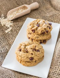 A great combination of peanut butter and chocolate chips make these cookies for a perfect breakfast